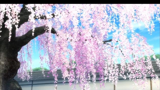 Аниме обои картинки Цветущая сакура