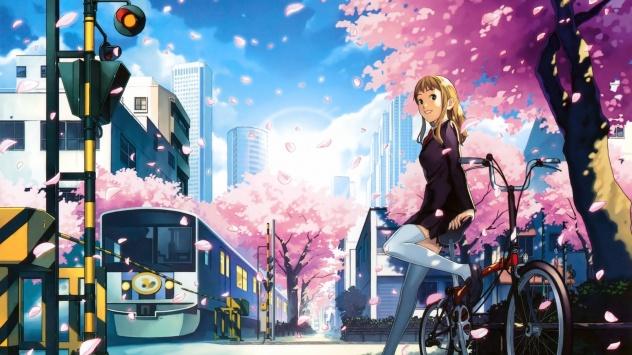 Аниме обои картинки Дерево, велосипед, поезд, цветущая сакура